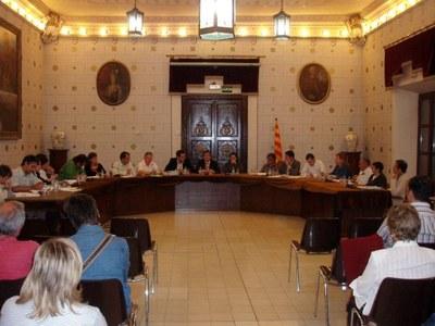 Ple Municipal de la Seu d'Urgell