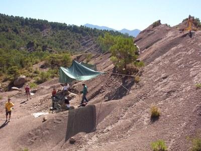 Dinosaures - Excavacions